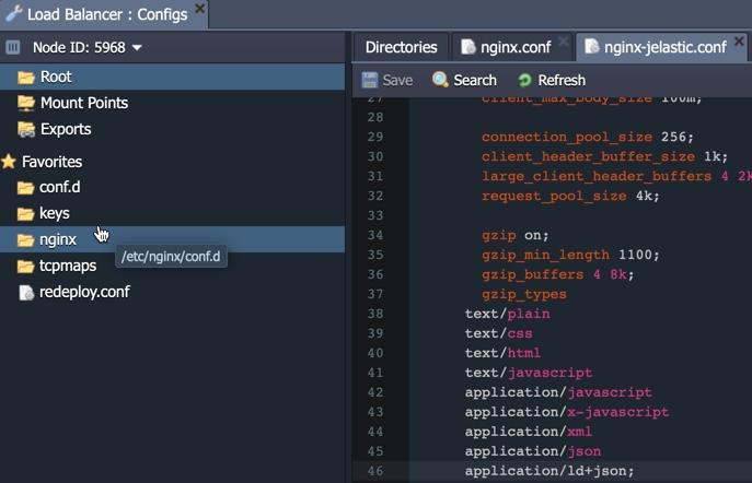 Configure nginx in Jelastic